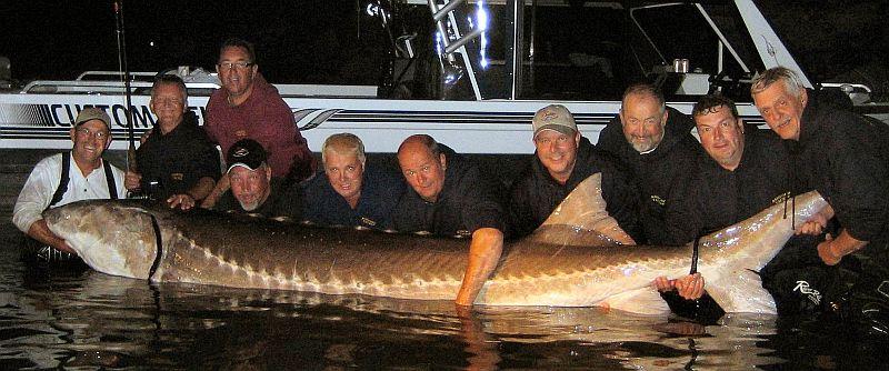 самые крупные рыбы выловленные рыбаками